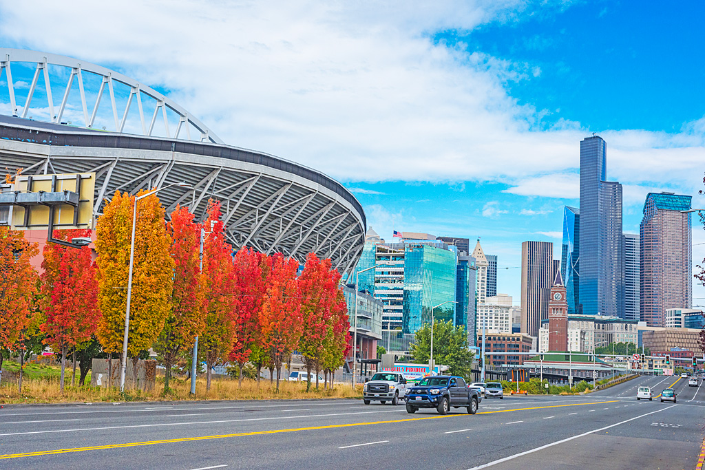 Autumn Foliage Safeco Stadium Seattle Washington